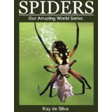 Spiders: Amazing Photos & Fun Facts on Animals in Nature